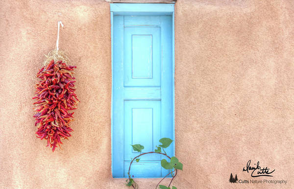 Blue Shutters And Chili Peppers Poster