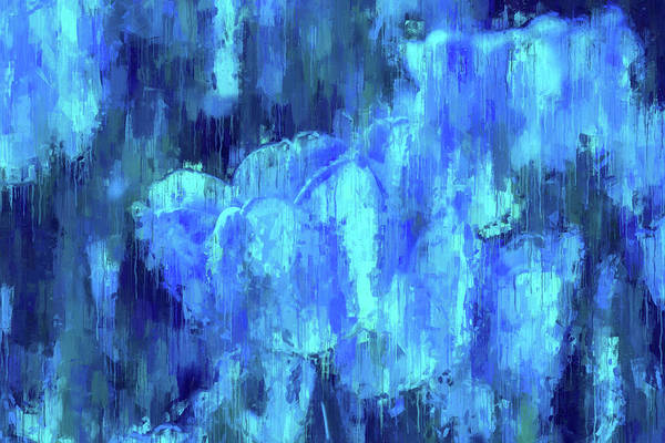 Blue Tulips On A Rainy Day Poster