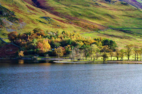 Buttermere Colours Poster