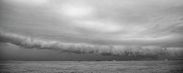 Cactus Roll Cloud Bw Poster