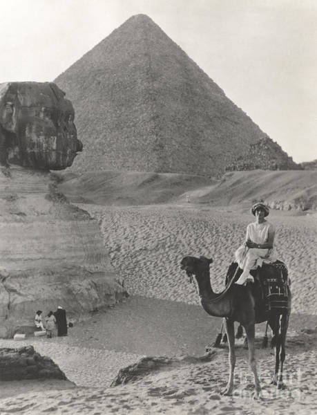 Camel Ride At The Sphinx And Pyramids Poster