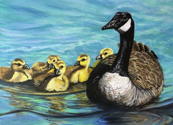 Canadian Goise And Goslings Poster