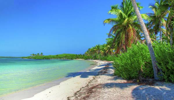 Caribbean Palm Beach Poster