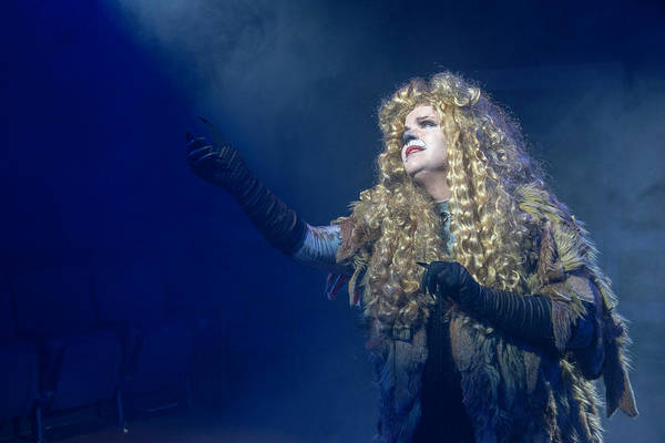 Cats Publicity Image  Poster