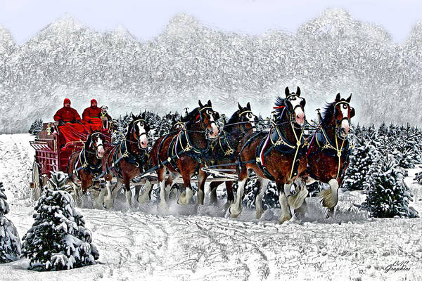 Clydesdales Hitch In Snow Poster