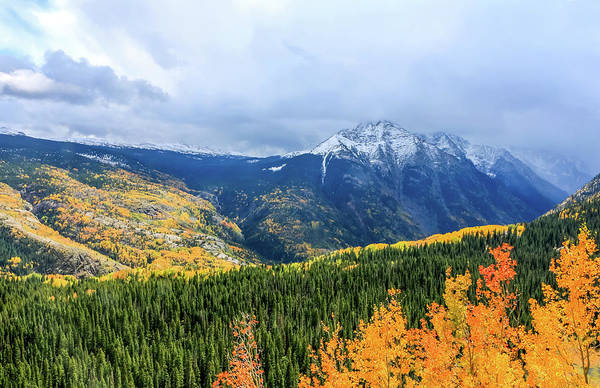 Poster featuring the photograph Colorado Aspens And Mountains 3 by Dawn Richards