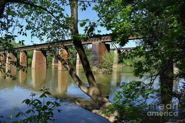 Congaree Trestels From The East Poster