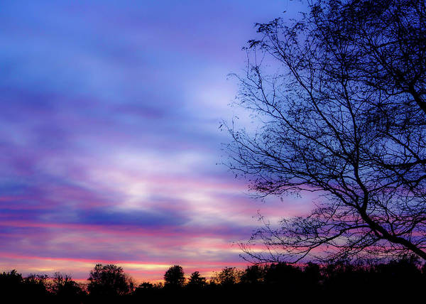 Cotton Candy Sunset In October Poster