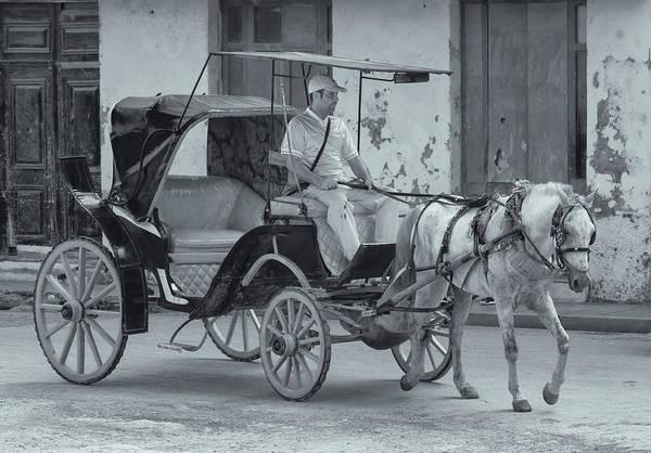 Cuban Horse Taxi Poster
