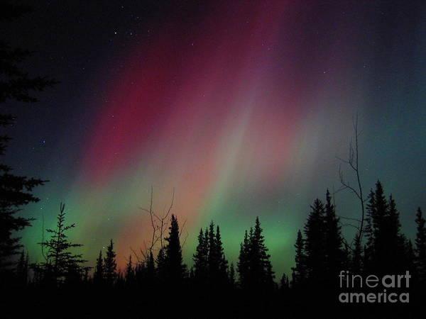 D. Aurora Borealis Alaska Red Skies Poster