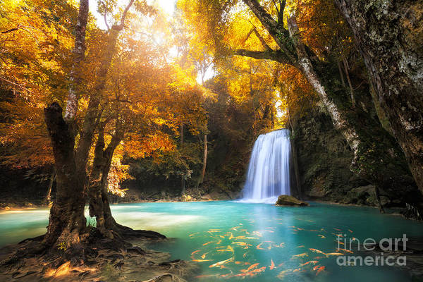 Deep Forest Waterfall In Kanchanaburi Poster