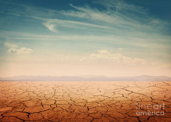Desert Landscape Background Global Poster