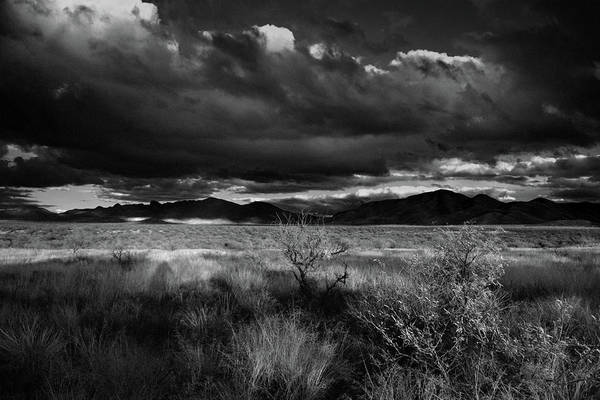 Poster featuring the photograph Desert Shadow Moods by Chance Kafka