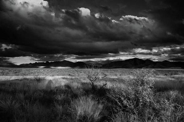 Desert Shadow Moods Poster