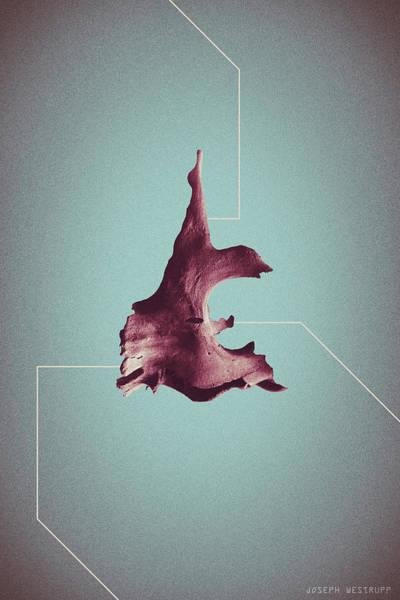 Diagesis - Abstract Geometric Bone Art Poster