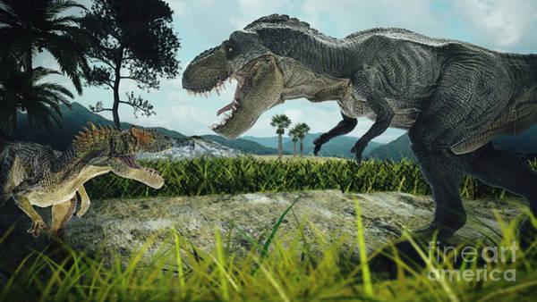 Dinosaur Scene Of The Two Dinosaurs Poster