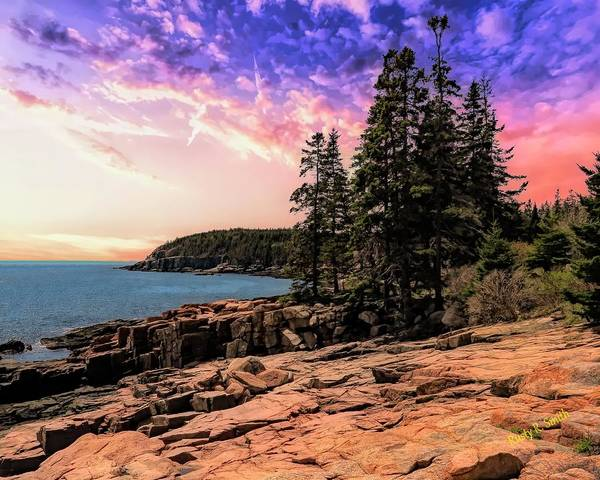 Distant View Of Otter Cliffs,acadia National Park,maine. Poster