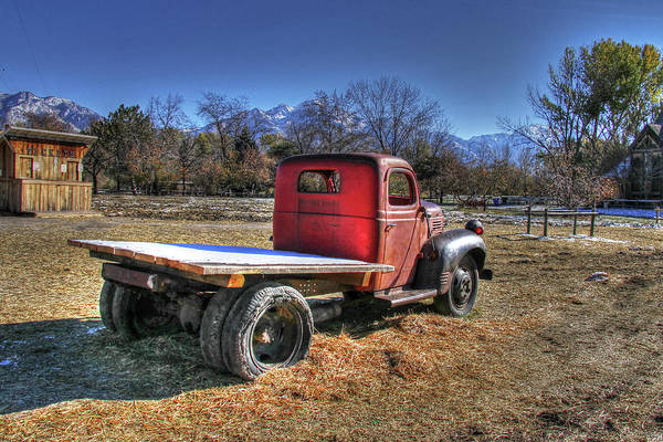 Dodge Flat Bed Truck On Farm Poster