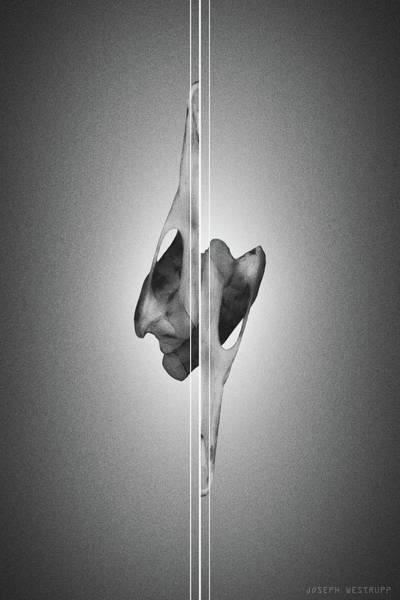 Dormiveglia Black - Surreal Abstract Bird Skull And Lines Poster
