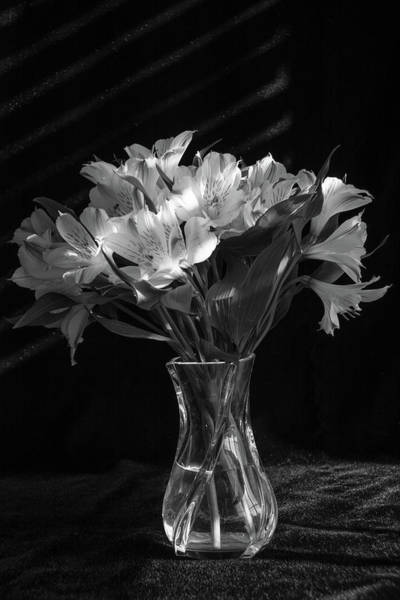 Dramatic Flowers-bw Poster