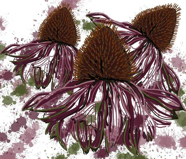 Poster featuring the drawing Echinacea Flowers Line by Joan Stratton