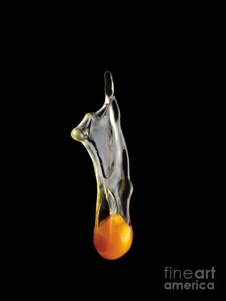 Egg Yolk Dripping, Falling, On Black Poster