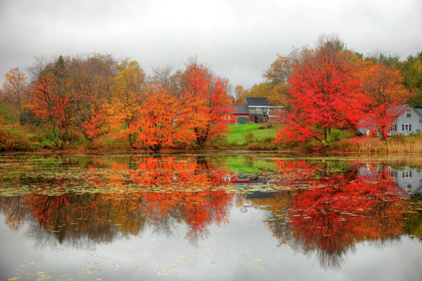 Fall Foliage In Rural New Hampshire Poster