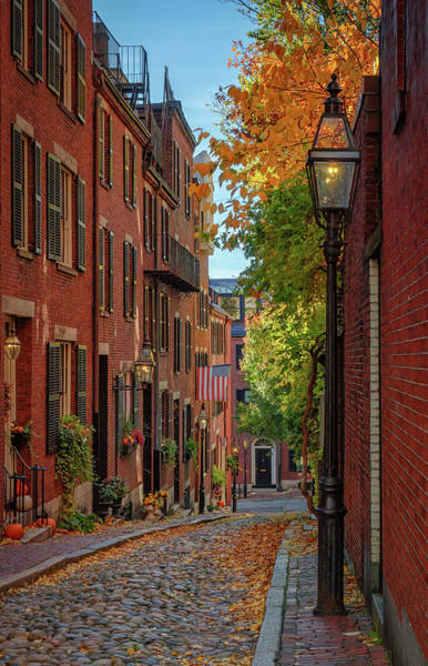 Fall In Beacon Hill Poster