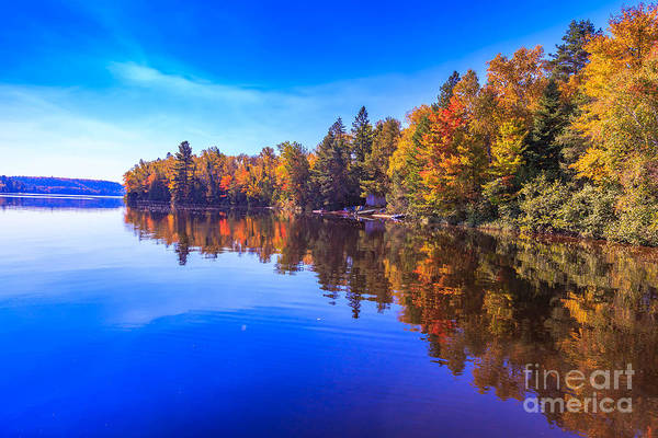 Fall Trees With Reflection Poster