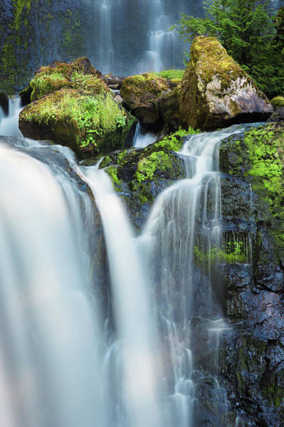 Poster featuring the photograph Falls Creek Falls by Nicole Young