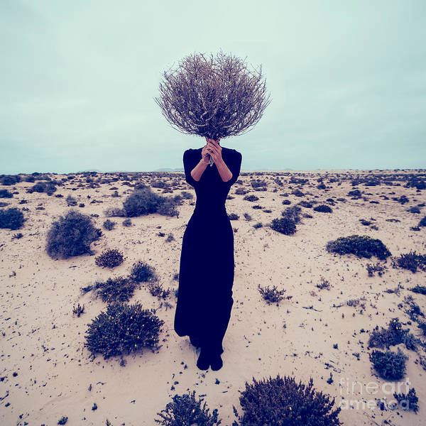 Fashion Photo. Girl In The Desert With Poster