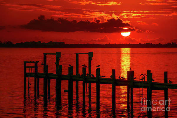 Poster featuring the photograph Fireball And Pier Sunrise by Tom Claud