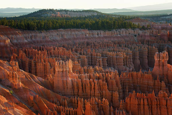 Poster featuring the photograph First Light On The Hoodoo Inspiration Point Bryce Canyon National Park by Nathan Bush