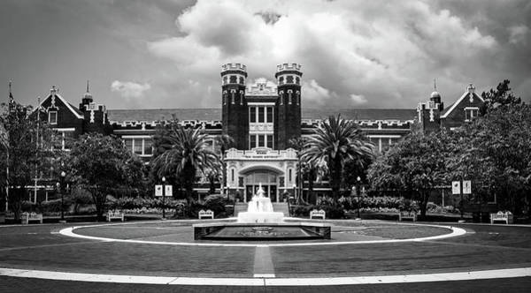 Florida State University Posters   Fine Art America