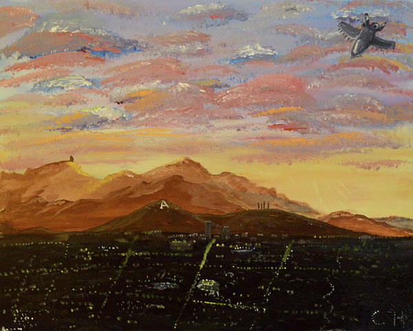Flying Over Tucson Poster