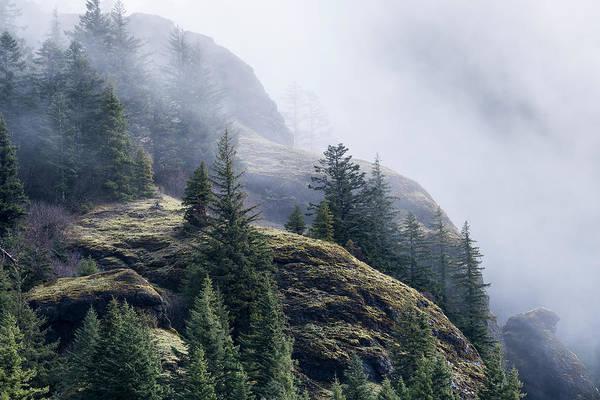 Foggy On Saddle Mountain Poster