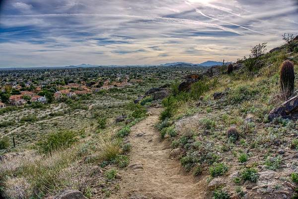 Following The Desert Path Poster