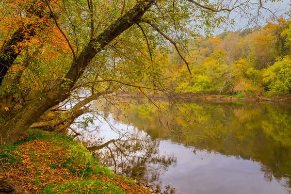 Poster featuring the photograph French Broad River by Tom Gresham