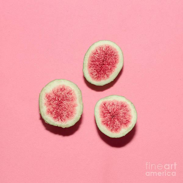 Fresh Figs On Pink Background.vanilla Poster