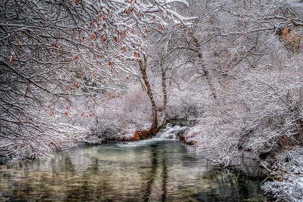 Frosty Pond Poster