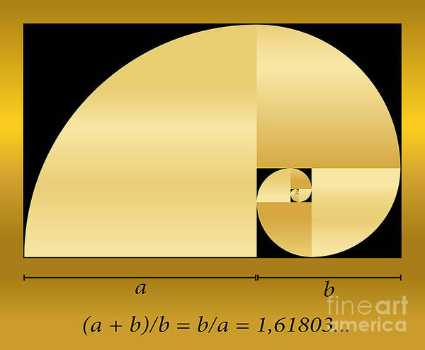 Golden Cut, Shown As A Spiral Out Of Poster