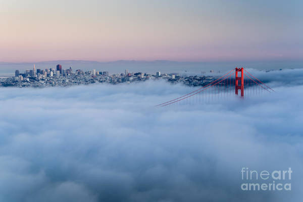 Golden Gate At Dawn Surrounded By Fog Poster