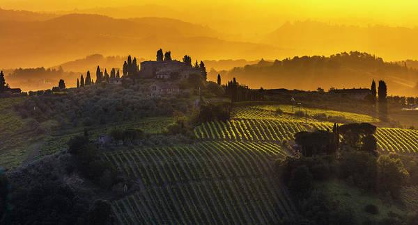 Golden Tuscany Poster