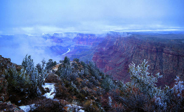 Grand Canyon Winter Scene Poster