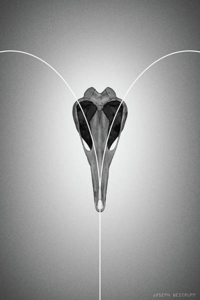 Gray Love From Ornithurae - Geometric Abstract Bird Skull Heart Poster