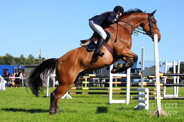 Horses Races Poster