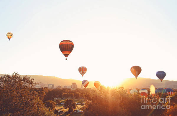 Hot Air Balloons In The Sky During Poster
