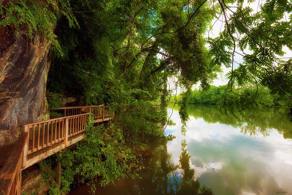 Ijam Nature Park Boardwalk Along The Tennessee River Poster