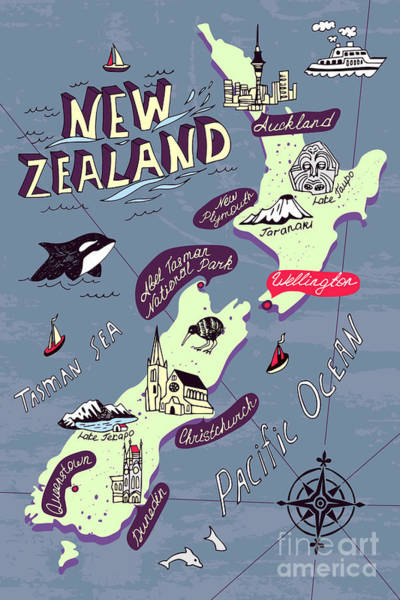Illustrated Map Of The New Zealand Poster
