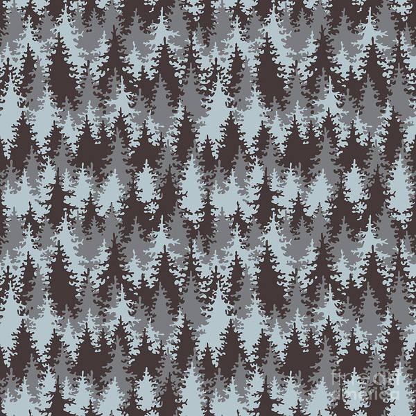 Illustration Coniferous Forest Poster